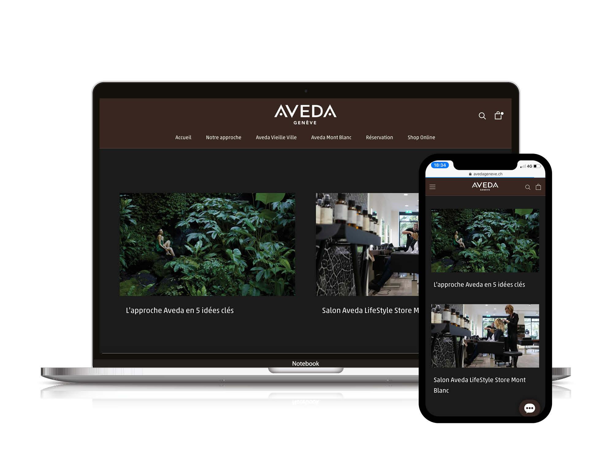 Site web Aveda Geneve Contenu
