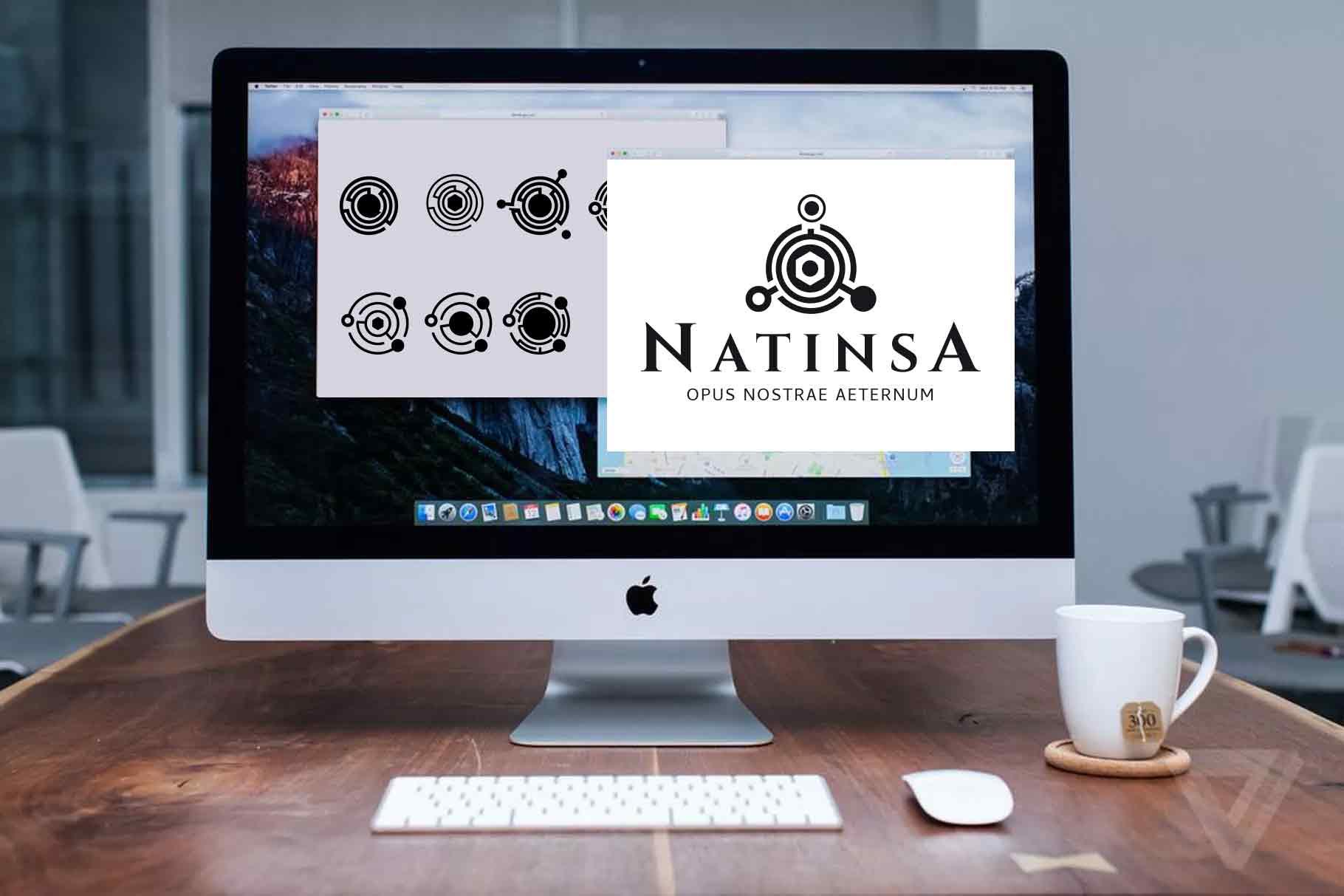 Recherche logo Natinsa piste 1 par My Albert Marketing à Genève