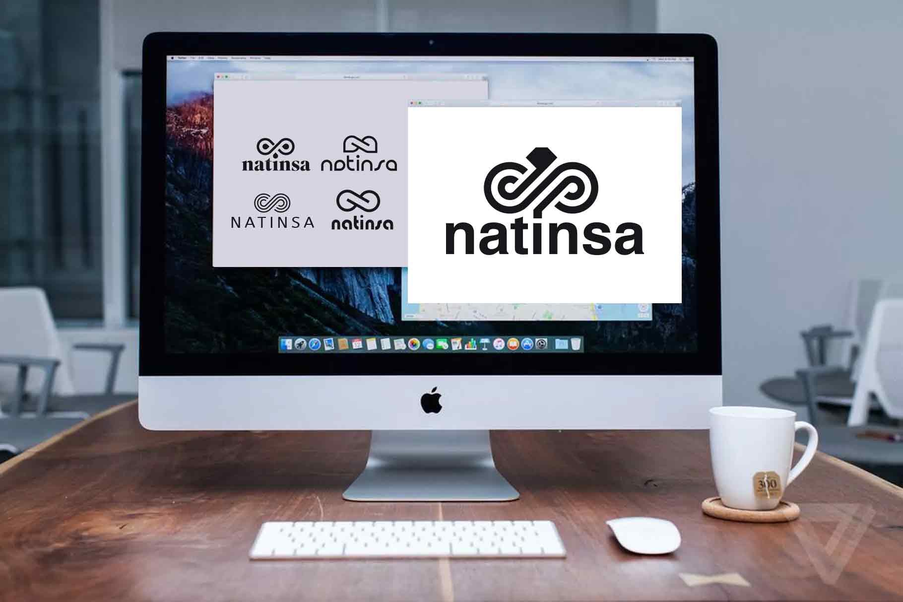 Recherche logo Natinsa piste 3 par My Albert Marketing à Genève