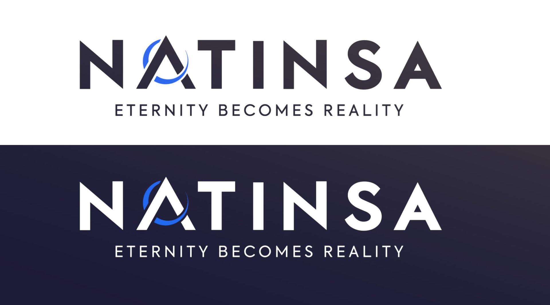 Recherche logo Natinsa piste 2 par My Albert Marketing à Genève
